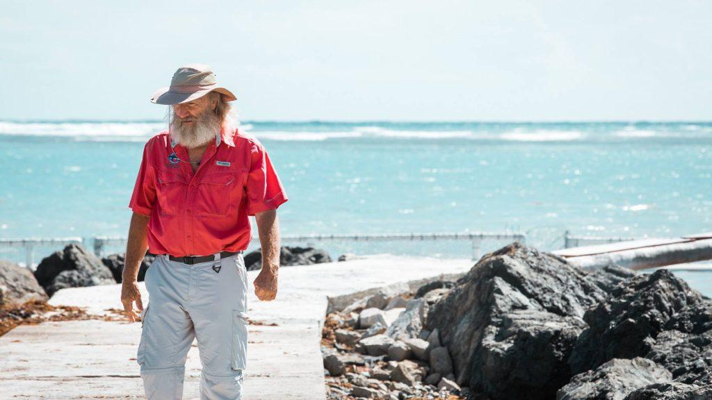 Fundación Grupo Puntacana, The Nature Conservancy y socios estratégicos fomentan rescate de arrecifes de coral
