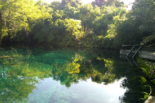 Participa en proyectos costeros y marinos sustentables en Punta Cana